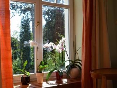 Fensterbank aus Holz über einem Heizkörper